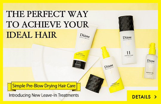 THE PERFECT WAY TO ACHIEVE YOUR IDEAL HAIR Simple Pre-Blow Drying Hair Care Introducing New Leave-In Treatments